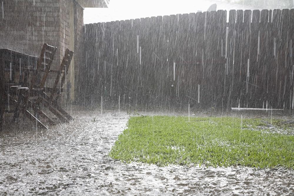 Rainy Season - Dealing with the Storm