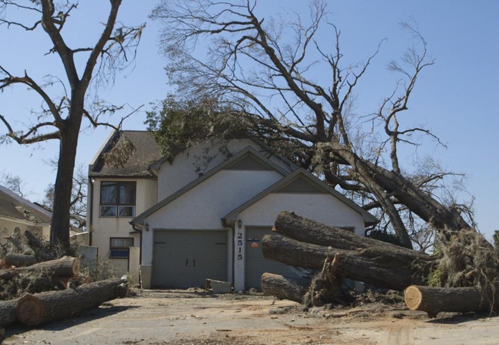 Florida Storm Cleanup and Repair